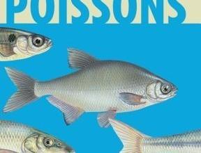 poissons-d-eau-douce
