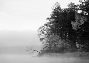 wallpaper-lake-gloomy-fog-143448